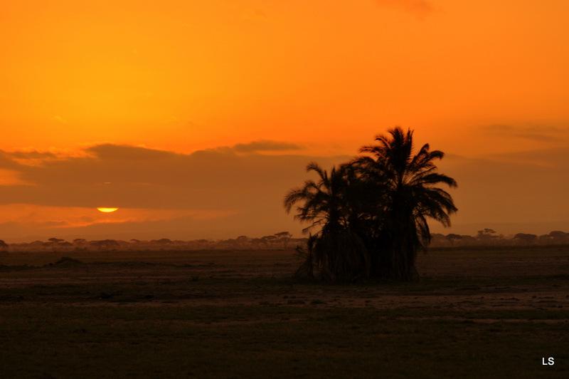 Amboseli (22)