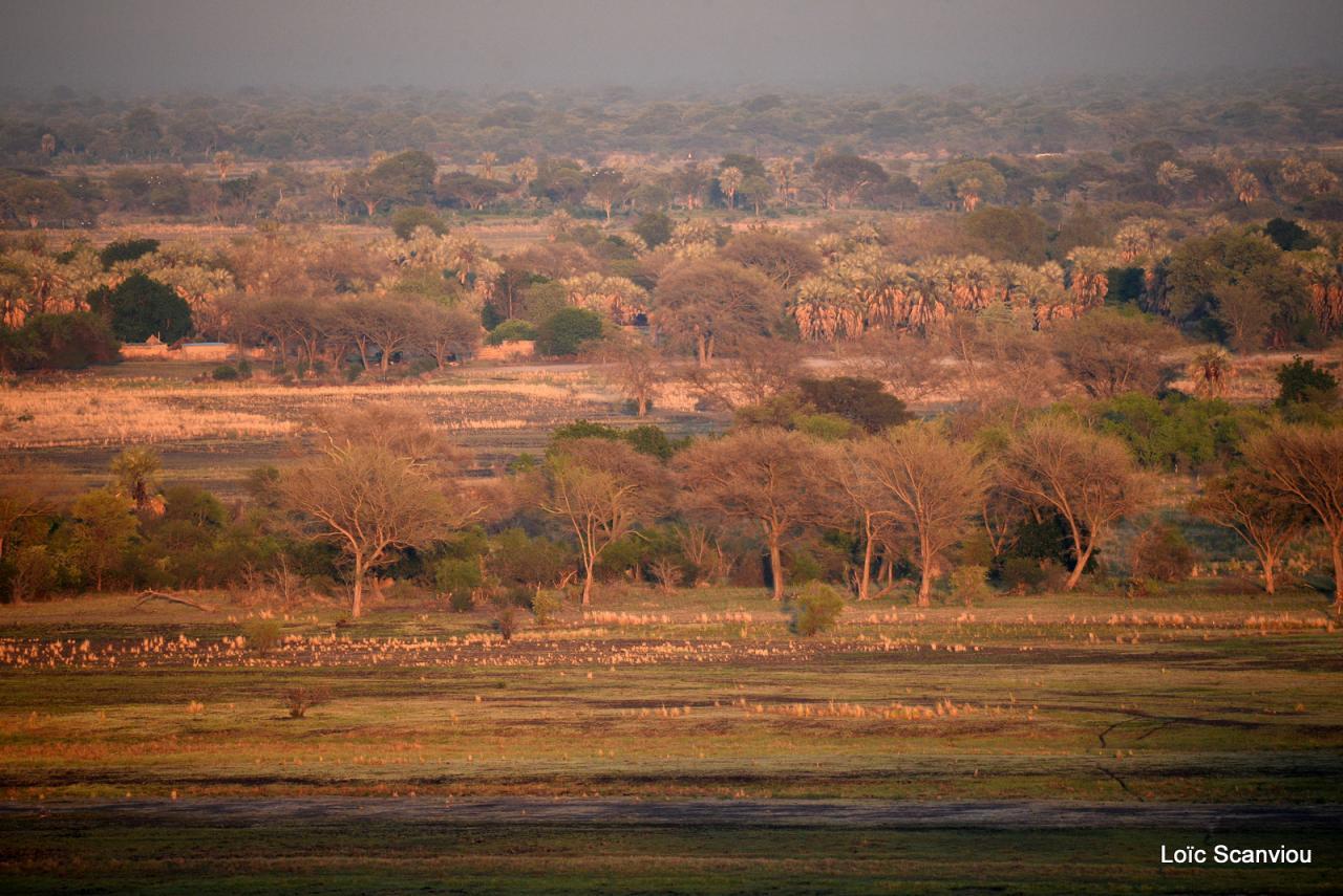 Botswana 2016