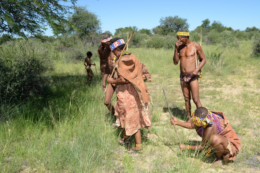 Bushmen (6)