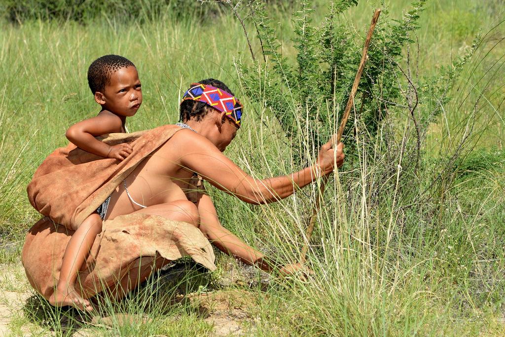 Bushmen (7)