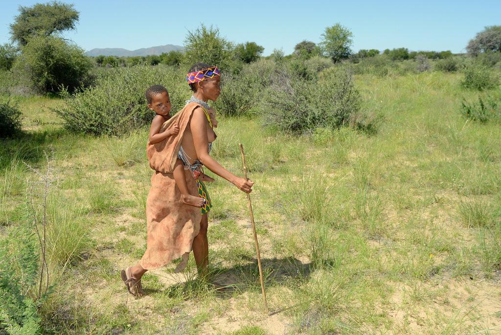 Bushmen (8)