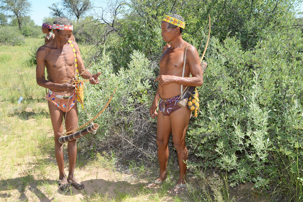 Bushmen (9)