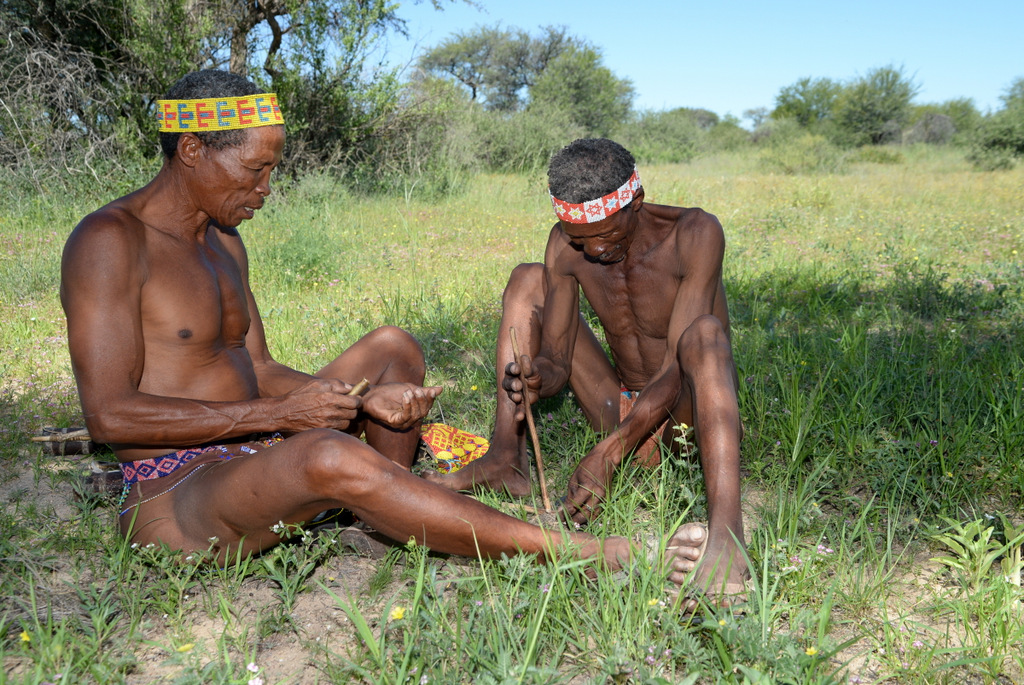 Bushmen (14)