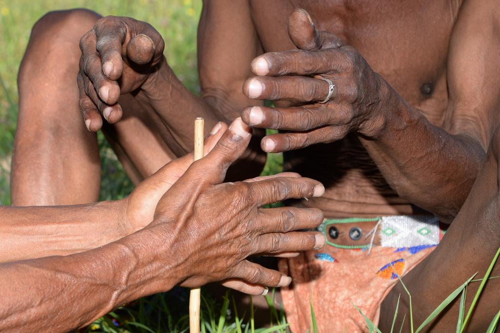 Bushmen (17)