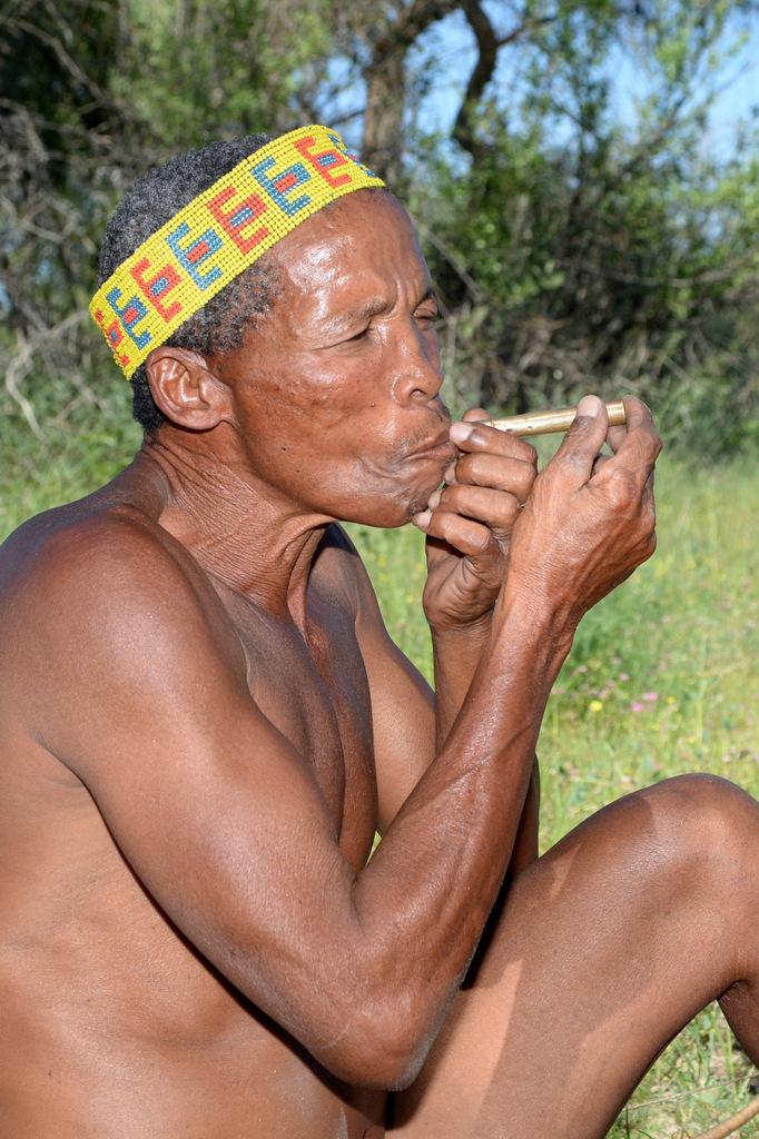 Bushmen (20)
