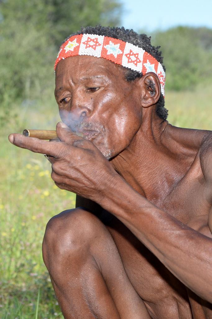 Bushmen (21)