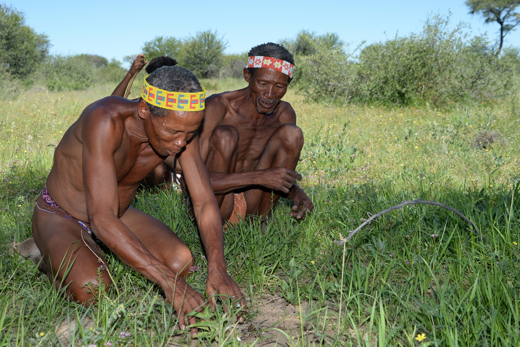 Bushmen (24)