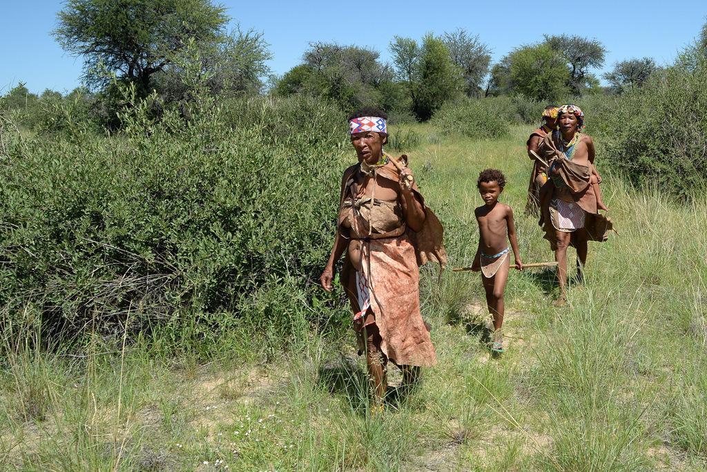 Bushmen (25)