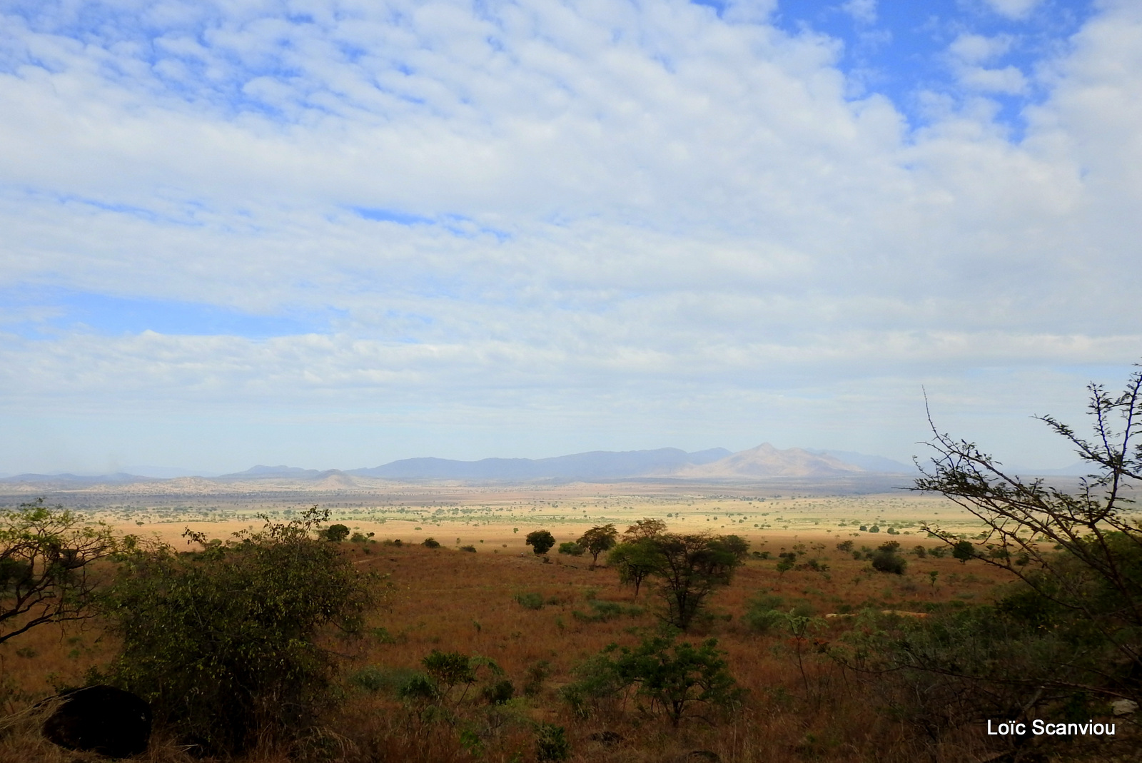 Kidepo Valley National Park (24)