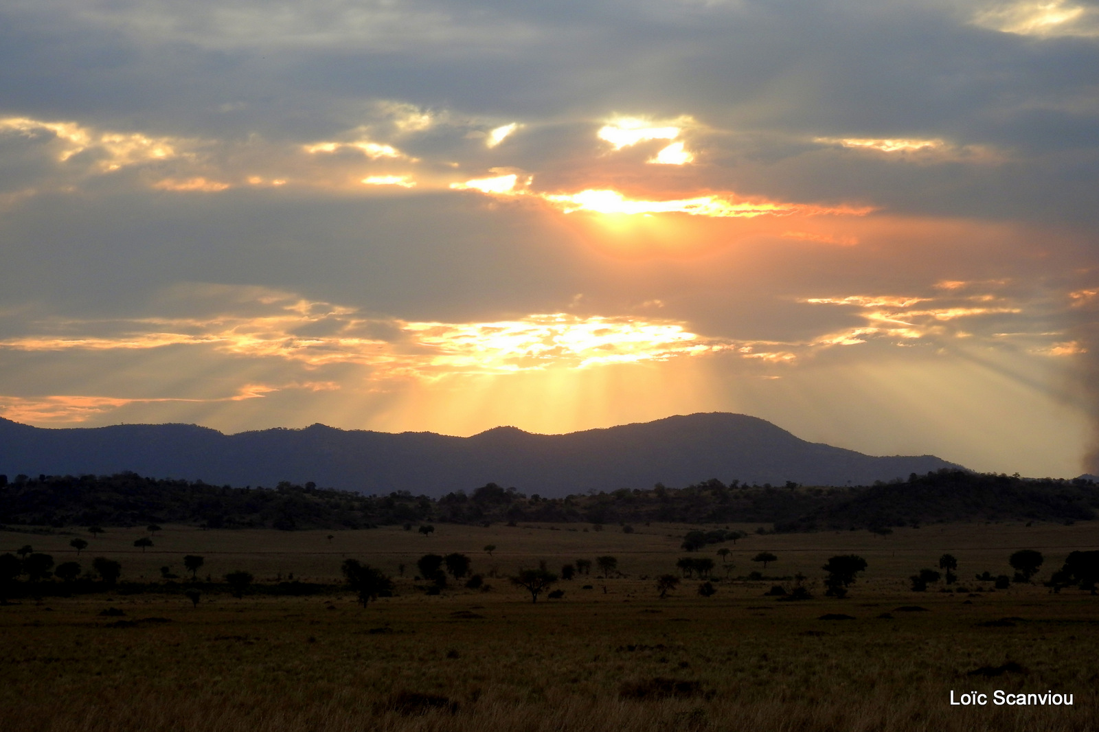 Kidepo Valley National Park (25)