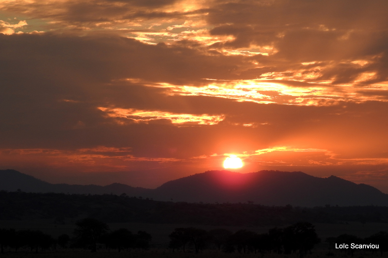 Kidepo Valley National Park (27)