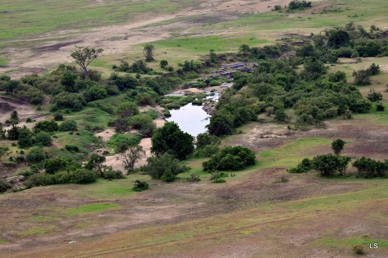 Masaï Mara (5)