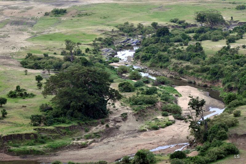Masaï Mara (6)