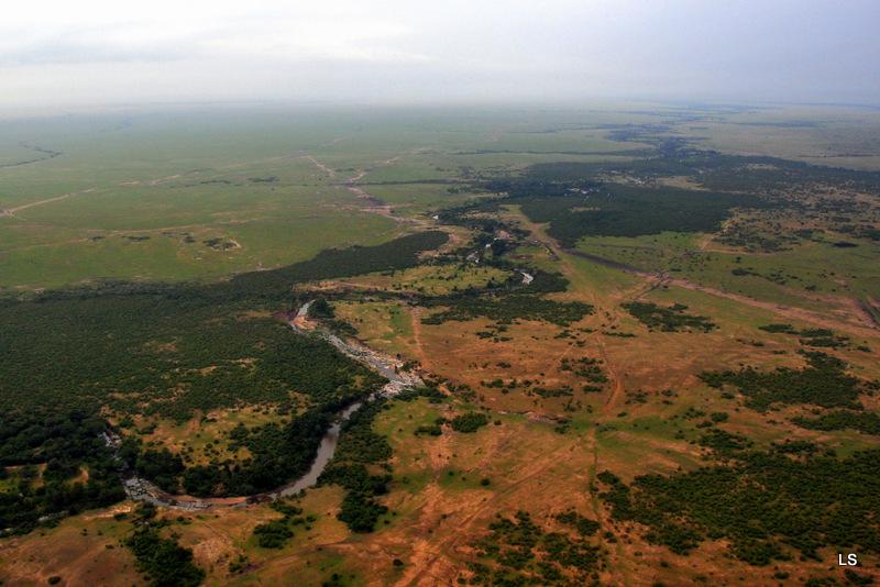 Masaï Mara (9)