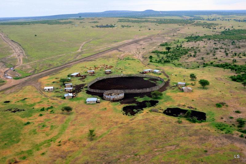 Masaï Mara (11)