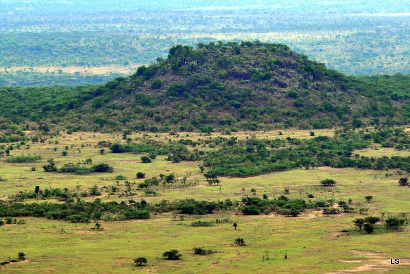 Masaï Mara (19)