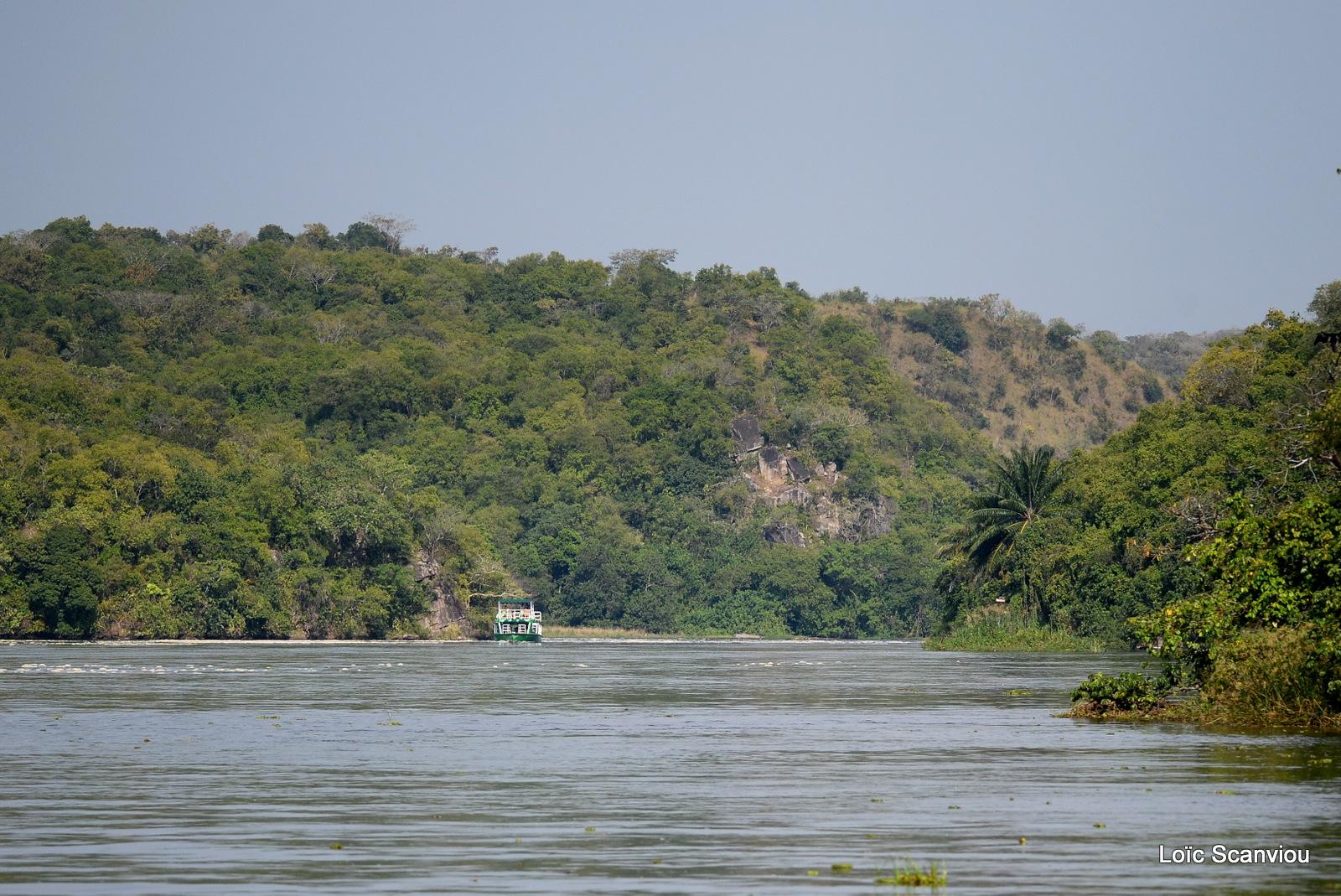 Nil Victoria/Victoria Nile (8)