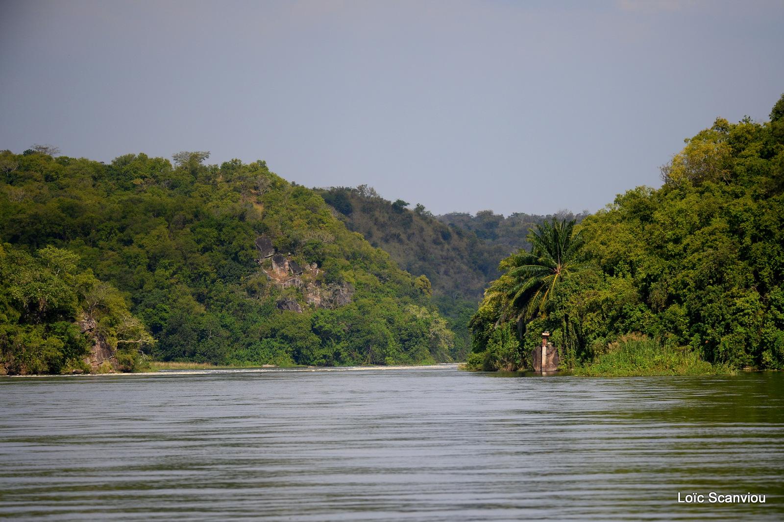 Nil Victoria/Victoria Nile (9)