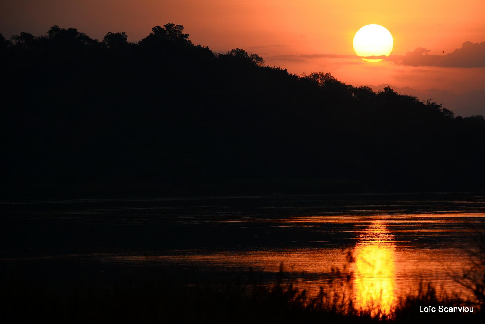 Nil Victoria/Victoria Nile (12)
