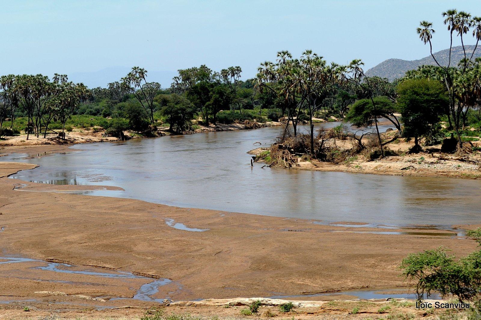 Samburu (3)